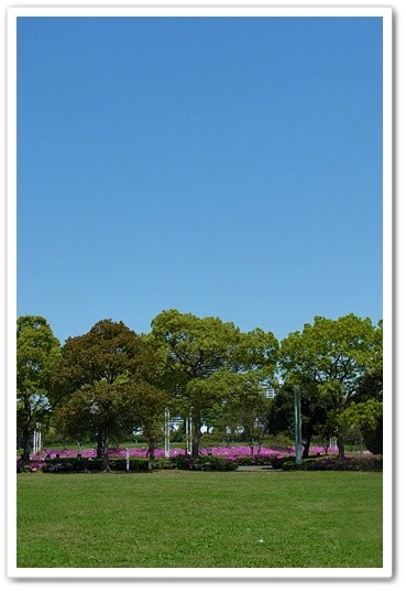 souther_20120530a