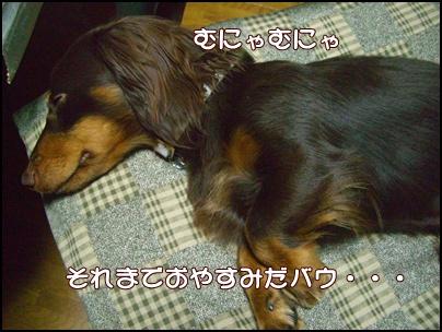 souther_20090505e