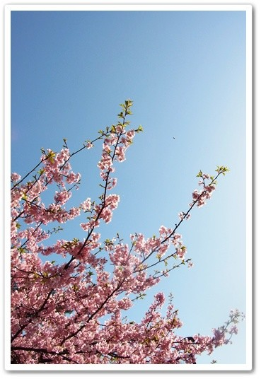 souther_20120420f