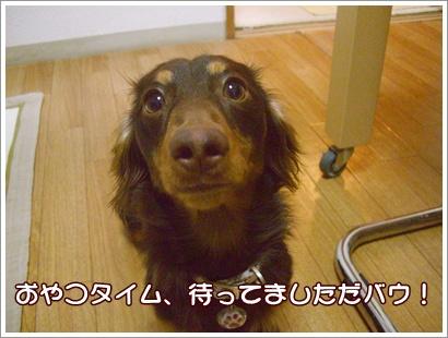 souther_20090226e