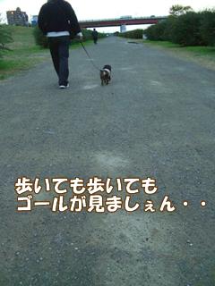 souther_20081126e