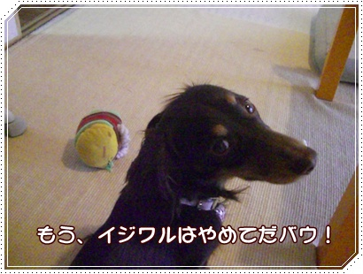 souther_20090228g