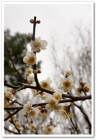 souther_20120331b