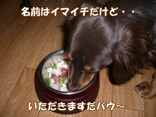 souther_20081203d