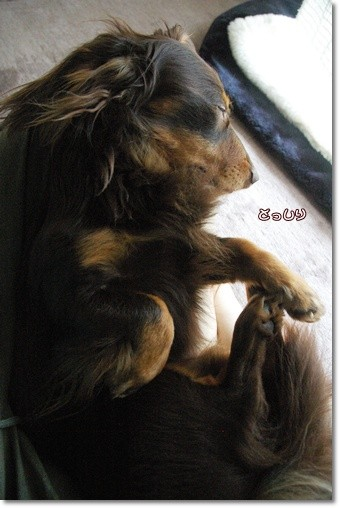souther_20110521e