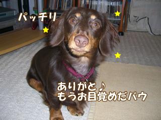 souther_20081116e