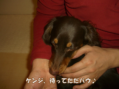 souther_20090131d
