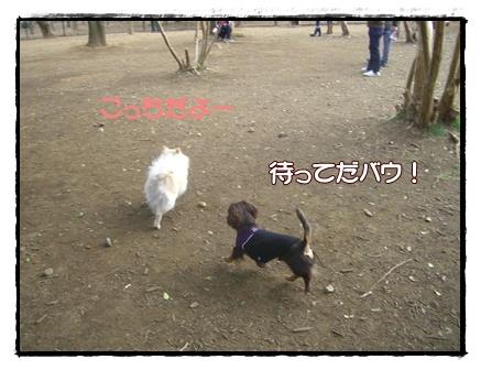 souther_20090331e