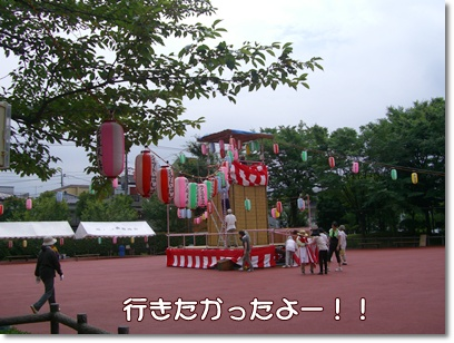 souther_20090809c