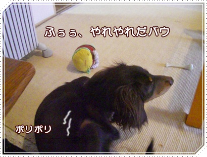 souther_20090228h