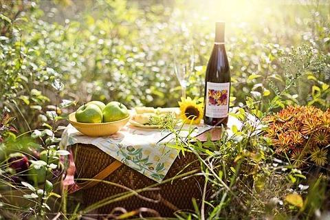 picnic-3661796__340