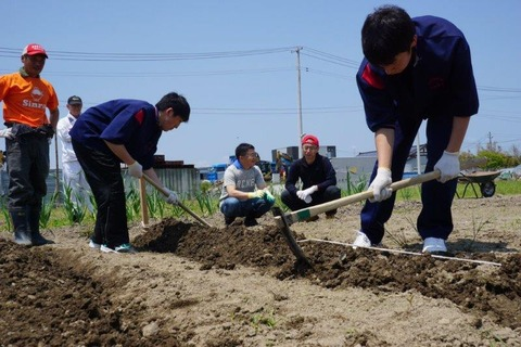 image3 (003)農業倶楽部11
