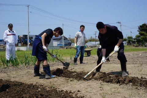 image2 (003)農業倶楽部10