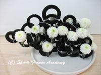 black & white 5