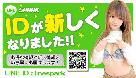 linebanner7_1