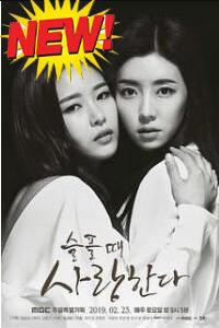 韓国ドラマ 悲しいとき愛する DVD-BOX OST付き
