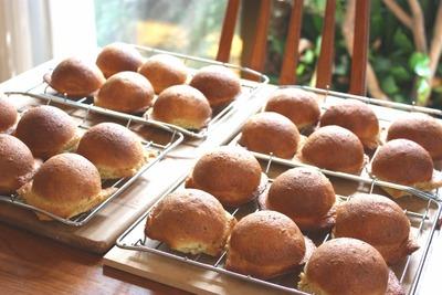 IMG_5622.jpg−2 10・10・6クッキーパン