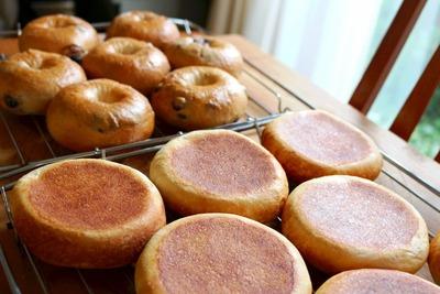 jpg−2 17・7・2餃子パン