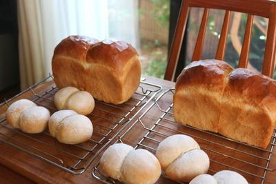 IMG_6121.jpg−2 18・5・16山型食パン