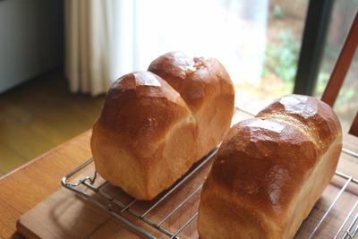 IMG_6203.jpg−2 18・5・23山型食パン