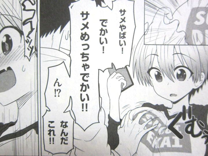 ウザ可愛さmaxの爆乳後輩宇崎ちゃんは遊びたい 第1巻 徒然