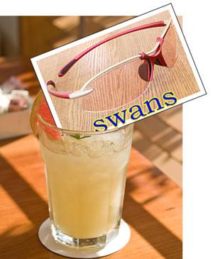 swans21