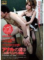 アナルの虜 3 〜M男ペニバン調教〜