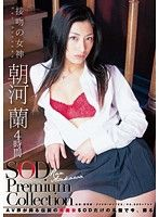 朝河蘭 4時間 SOD Premium Collection