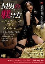 M男の躾け方 〜スパンキング・CBT・アナル〜 ツキメ女王様