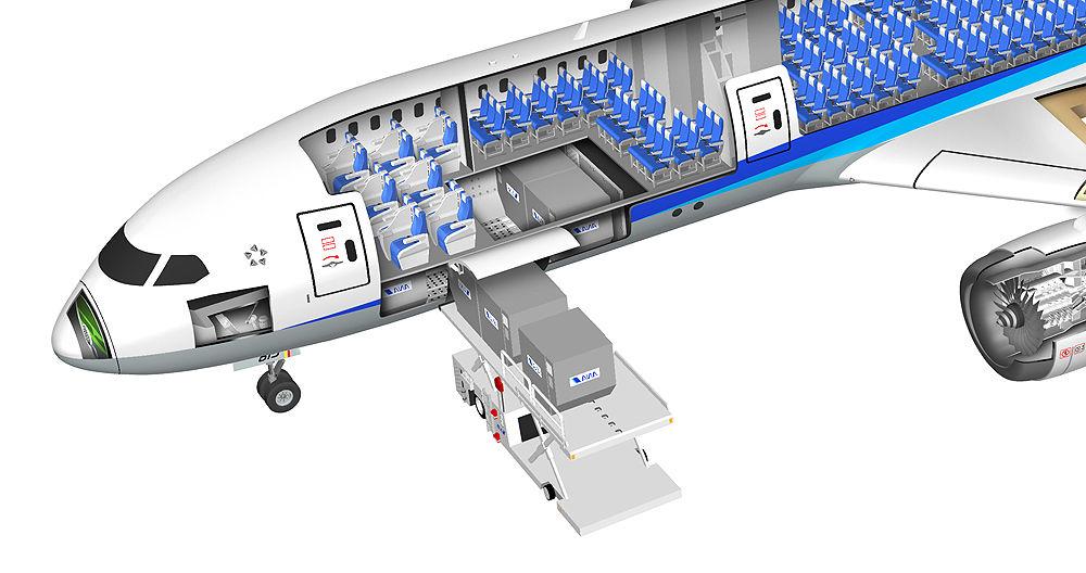 飛行機の中間 旅客機anaボーイング787 8のしくみを説明 透視図イラスト