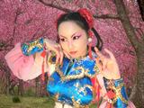 京劇春麗2
