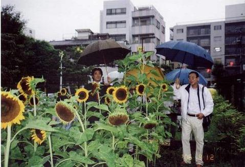 2006himawari3