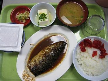 東京税関晴海出張所食堂5