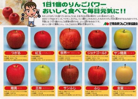 りんご下敷