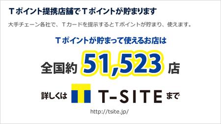 t-point_r13_c3