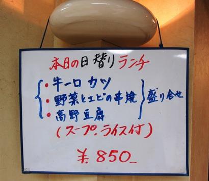 IMG_1254