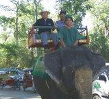 この象タクシーの座席はけっこう高い目線です