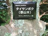 武庫ネイチャークラブ(植物看板)