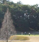 ゴルフ日和とはこんな天候のことでしょうね♪