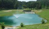 石垣で池がこんなに綺麗に!