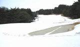 08年 初の雪景色