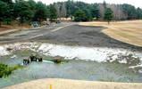 7番の新池改造中(池の輪郭が)