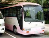 これがピンクバスだ!