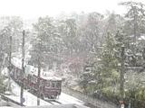 雪降りまくりでトホホホ