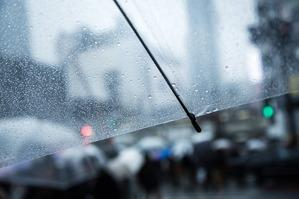 雨傘フリーV