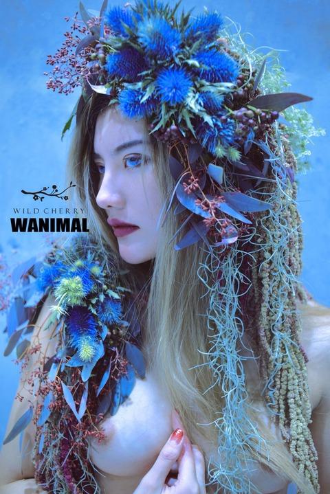 wanimal-1-31