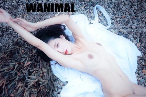 wanimal-1-69