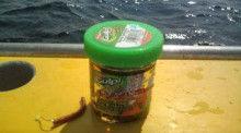 釣りは何でも楽しい!vol2-20120729091532.jpg