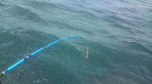 釣りは何でも楽しい!vol2-20120729130825.jpg