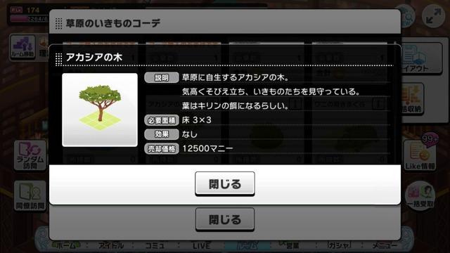 アカシアの木の画像IMG_0259_compressed